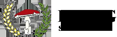Lidag Logo Negro –